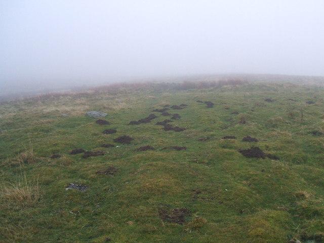 Mist and molehills above Swindale