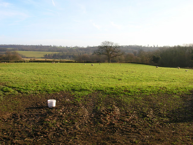 Fields near Ashburnham