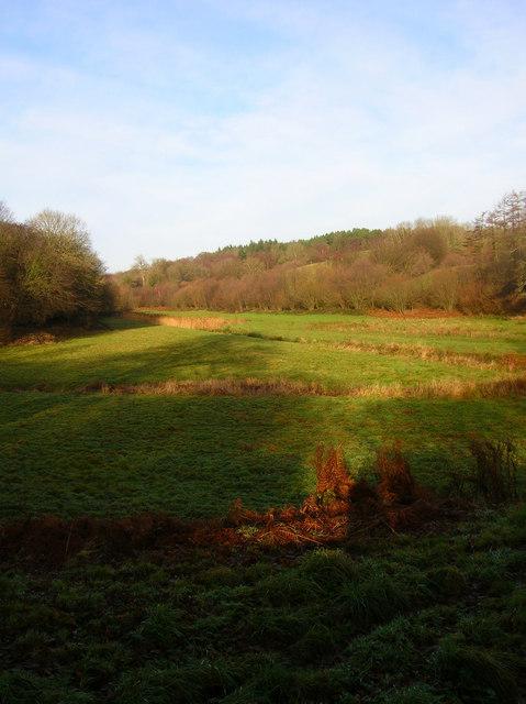 Small Valley, Ashburnham
