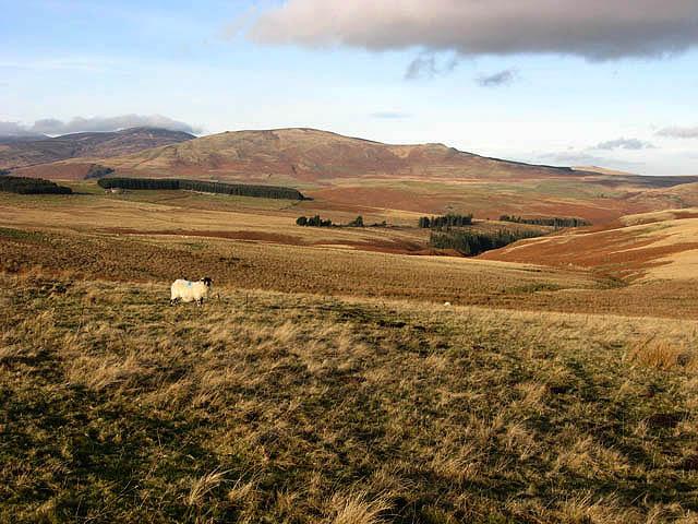 Rough grazing land