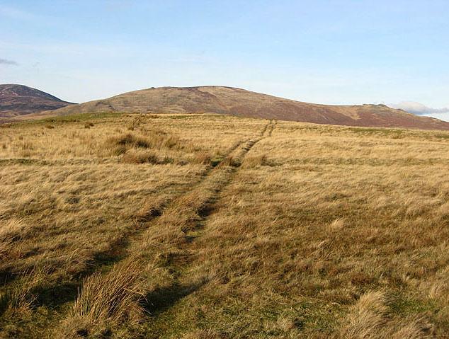 Rough grazing track