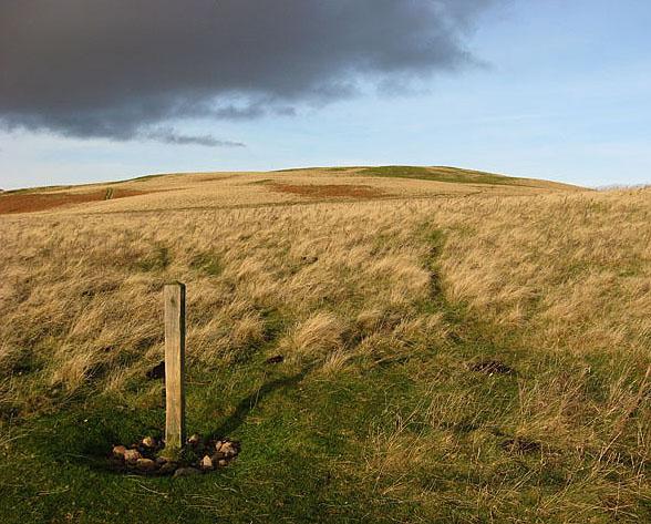 Rough grazing south of Ewe Hill