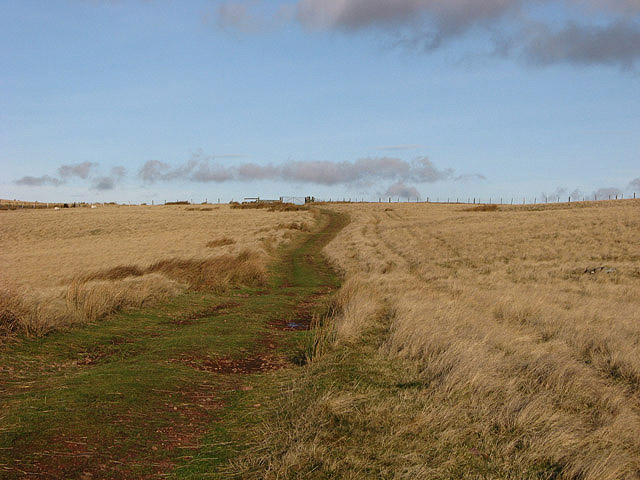A public bridleway to Chesters