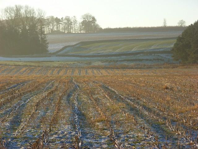 Farmland, Edenhall