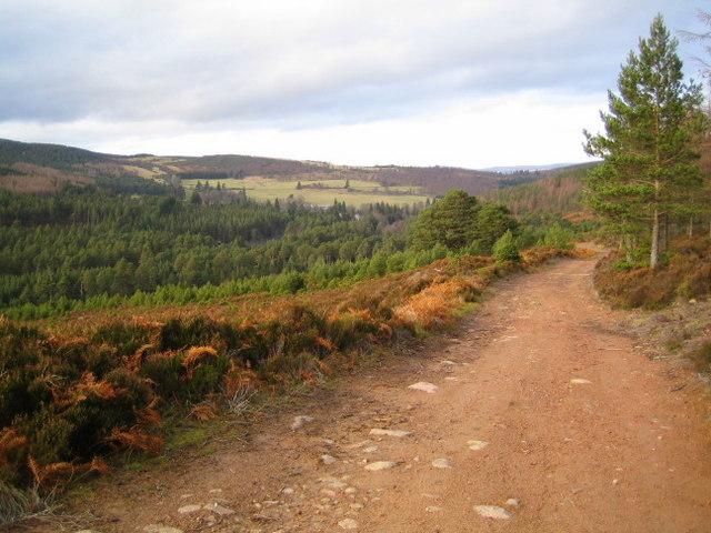 The Firmounth Road climbing out of Glen Tanar (2)