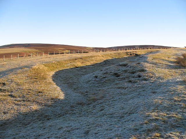 Gullied field