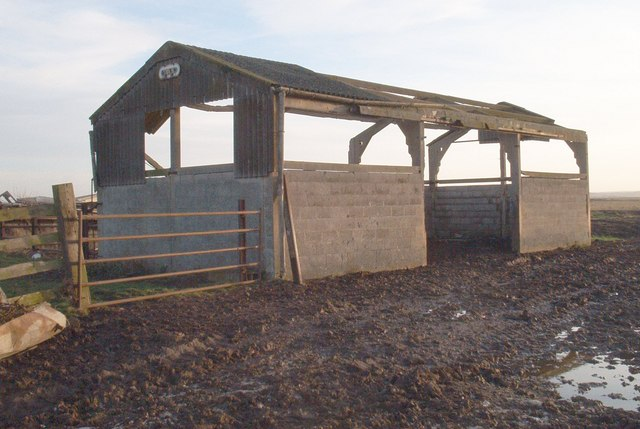 Sheep Pen on New Rides Farm, Eastchurch