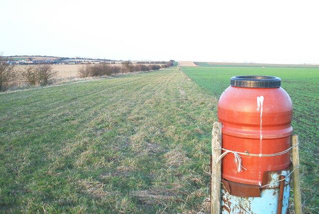 New Rides Farm near Eastchurch Prison