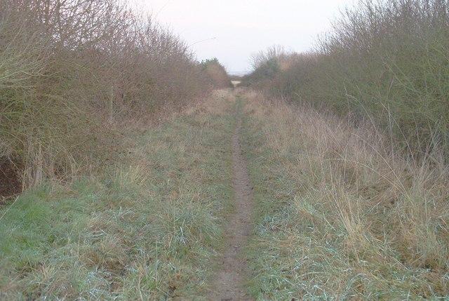 Footpath off Church Road, Eastchurch