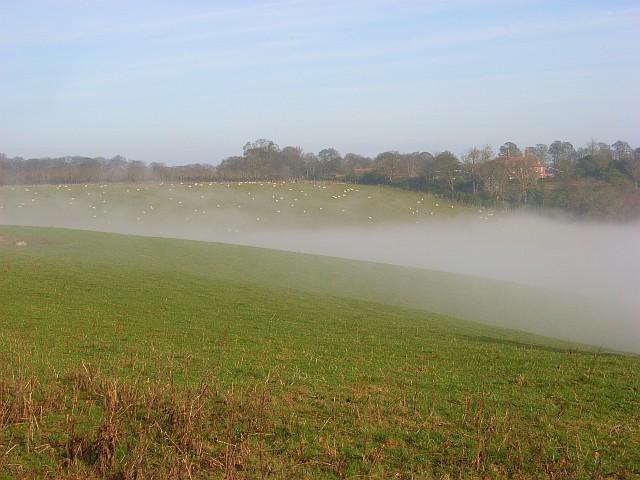 Foggy valley, Turville