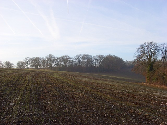 Farmland below Hollandridge Farm