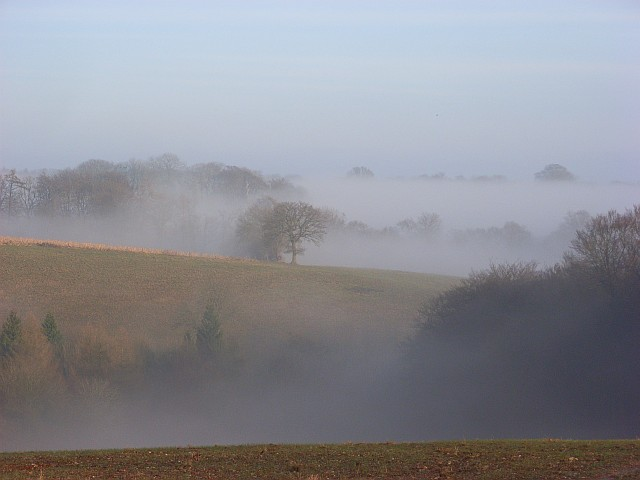 A Chiltern landscape in fog