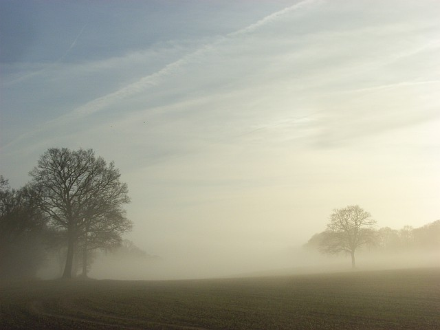Misty farmland, Hollandridge