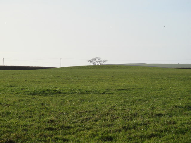 Tumulus in field beside the A39
