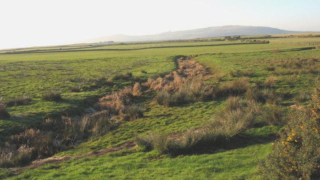 Drainage ditch on the Soch flood plain