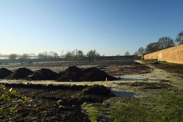 Restoration of Amisfield walled garden