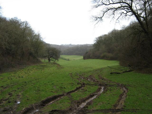 Valley near Splatts Wood