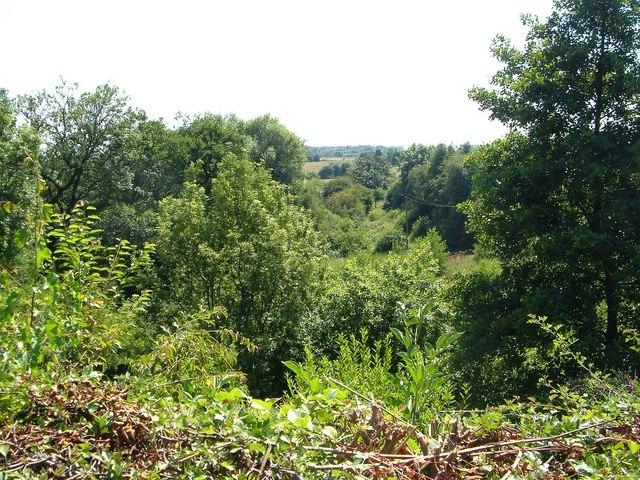 Valley of the Marbury Brook