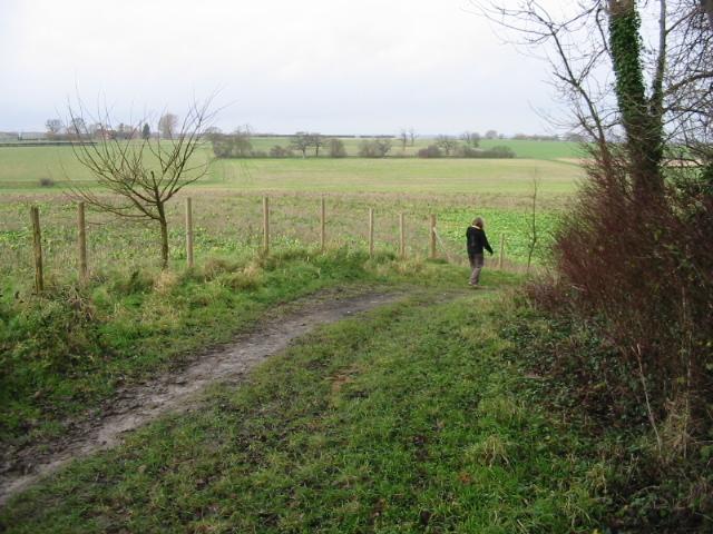 Bridleway near Goodnestone