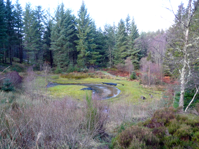 "The ""Salmon "" shaped pond at Aldie Burn"