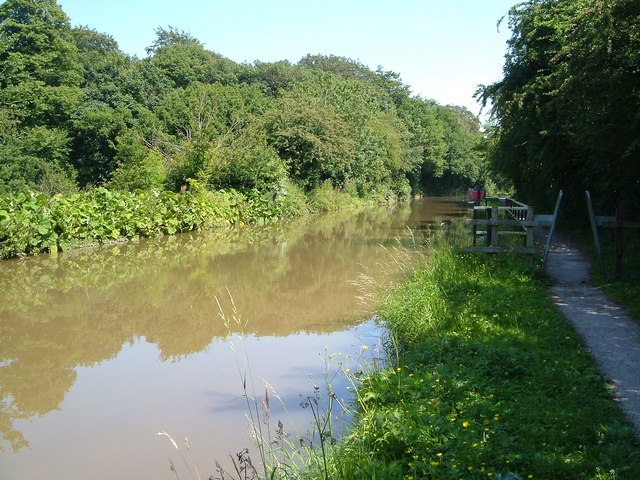 Trent and Mersey Canal near Jackson's Turn