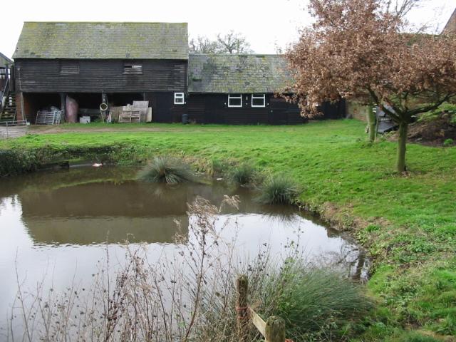 The pond at Bonnington Farm
