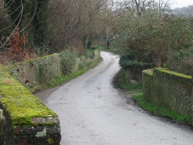 Looking SE along Love Lane