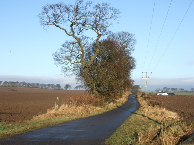 Access road to Dyland Cotts