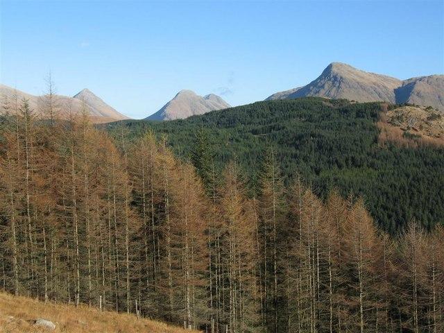 Glenetive Forest from NE ridge of Beinn Trilleachan