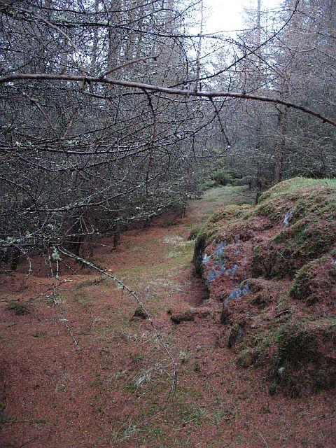 Crag, Braes of Foss Forest