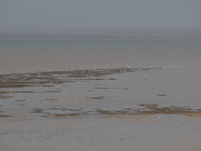Mussel beds at Old Hunstanton