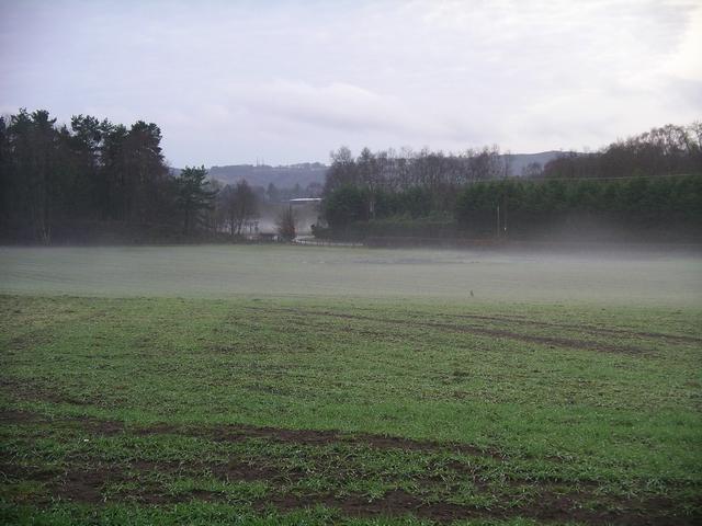 Mist in the field, Halleaths