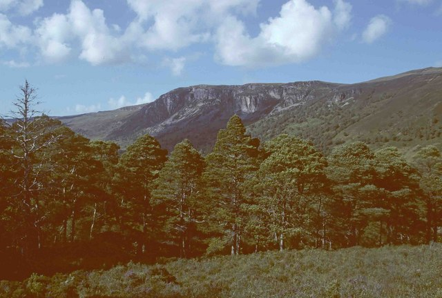 Rhidorroch Woods, with Creag Ghrianach and Creag Ruadh behind