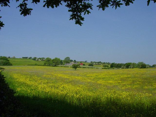Hays Farm near Rushton Spencer
