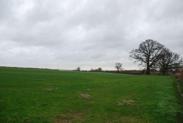 Field on Road Lane Farm