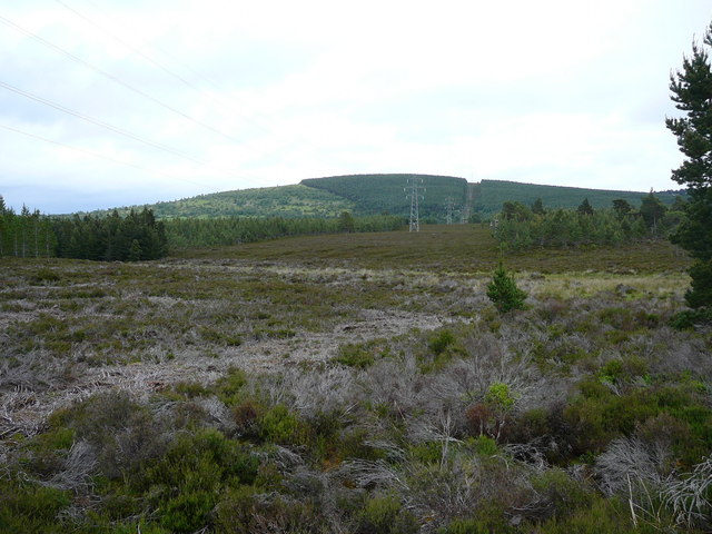 Forest clearing, Beananach Wood. View towards Carn Lethendry