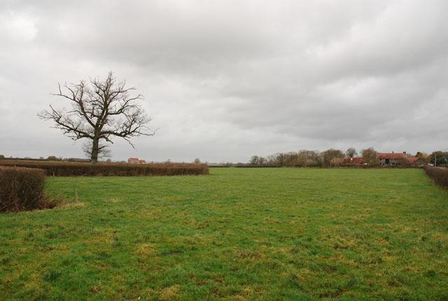 Field on Higher Farm