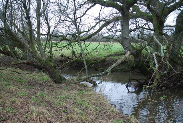 Caundle Brook
