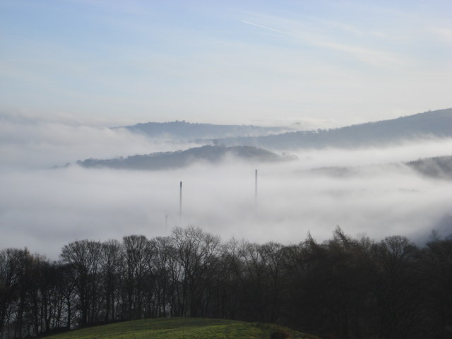 Enthovens in the mist