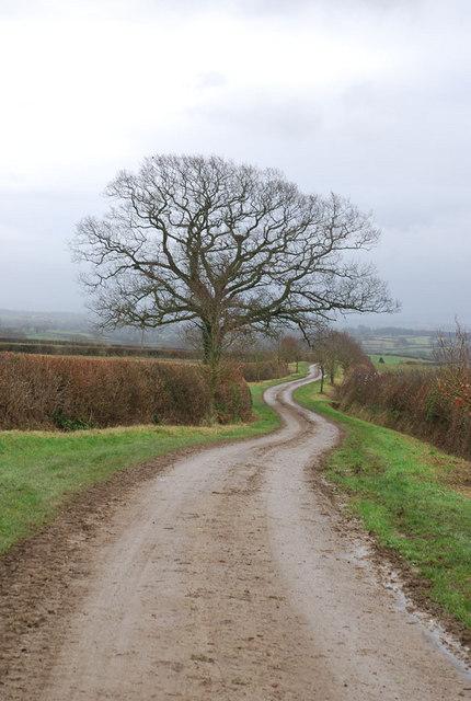 Holt Lane as lane