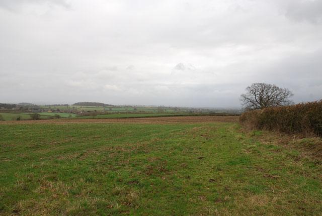 Fields of Caundle Farm