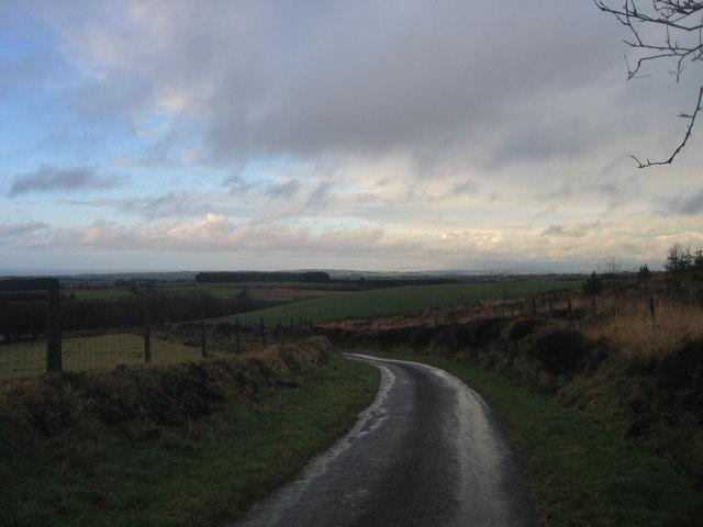 Lon wledig ger Bryn-beddau / Country Lane near Bryn-beddau