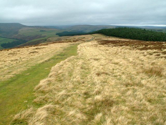 Above Hope Brink looking to Wooler Knoll