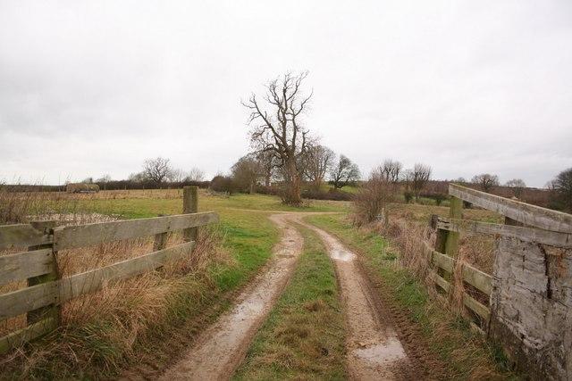 Wetherton Hill