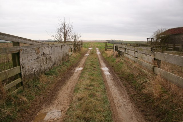 Track to Low Barn