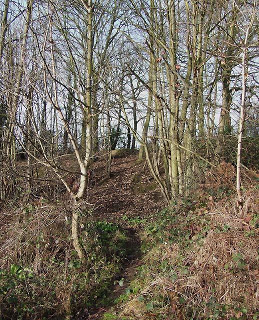 Footpath to Smestow, Staffordshire