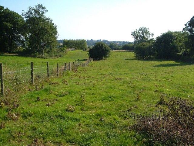 Fields near Chebsey