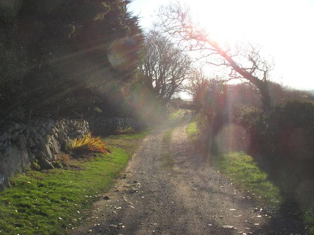 Farm track with public rights of way near Congl-y-gadlys