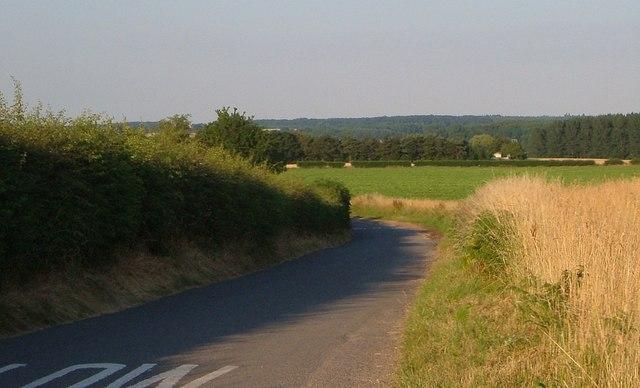 Lane to Lynn