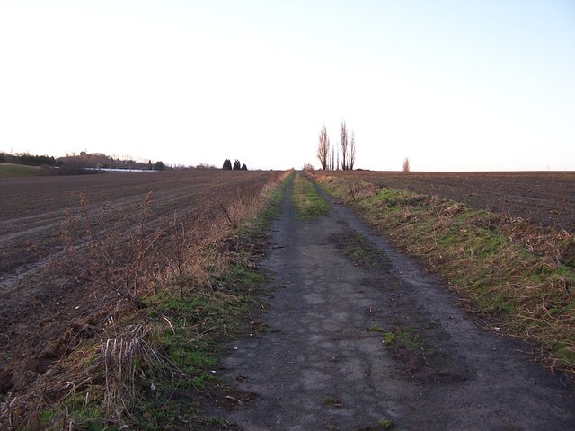 Disused farm track